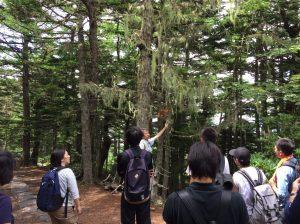富士山5合目での研修風景